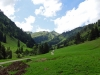 Alpe-Laufbichl_05