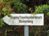 Fossiliensteinbruch_01