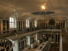 Naturkundemuseum-4