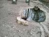 wildpark-sw_19_0