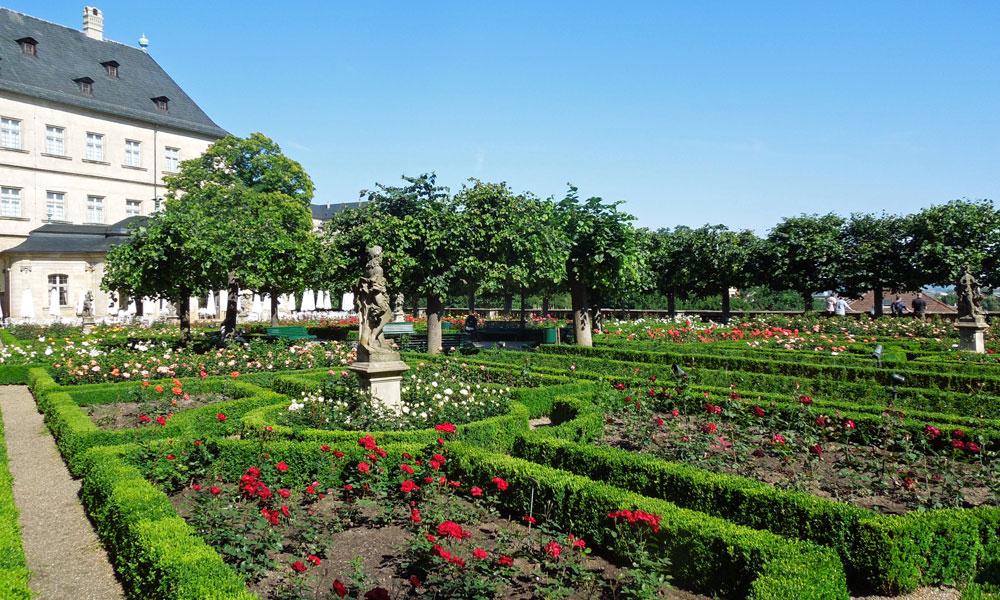 Bamberger Spaziergänge – Dom und Michelsberg