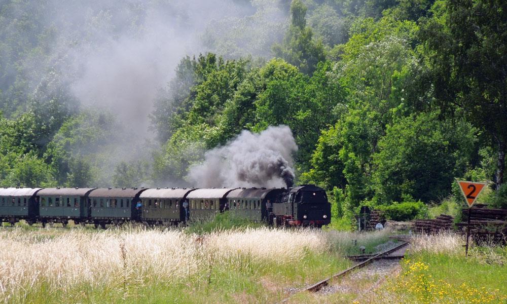 Mit der Dampflok durchs Wiesenttal