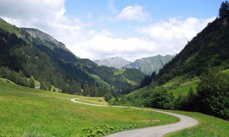 Alpe-Laufbichl