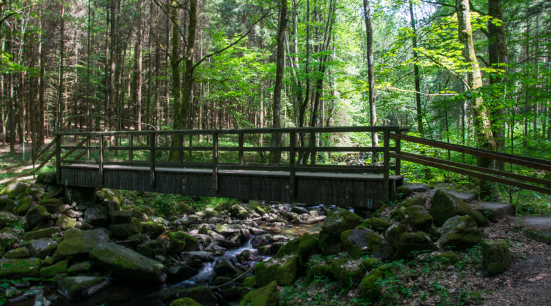 Saußbachklamm – Klammwanderung im Bayerischen Wald