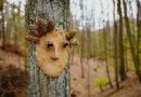 Im Michelsberger Wald